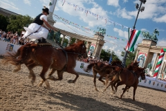 Traditional Horse Racing in Budapest
