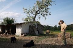 Ungarische Farm