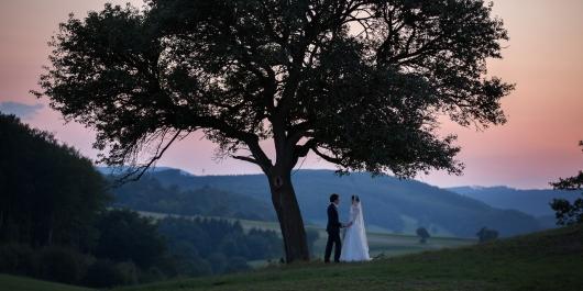 Esküvői Tortavágás Albumban