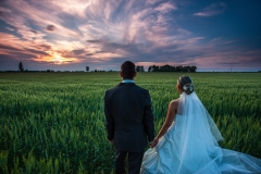 Wedding Photography in the Meadow