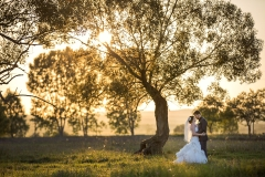 Green Forest Wedding Image