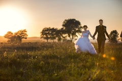 Creative Wedding Photography in a Park