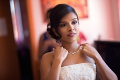 Indian Wedding Photography in Vienna